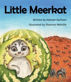 Little Meerkat: Big Ambitions